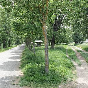 Parque de El Parral